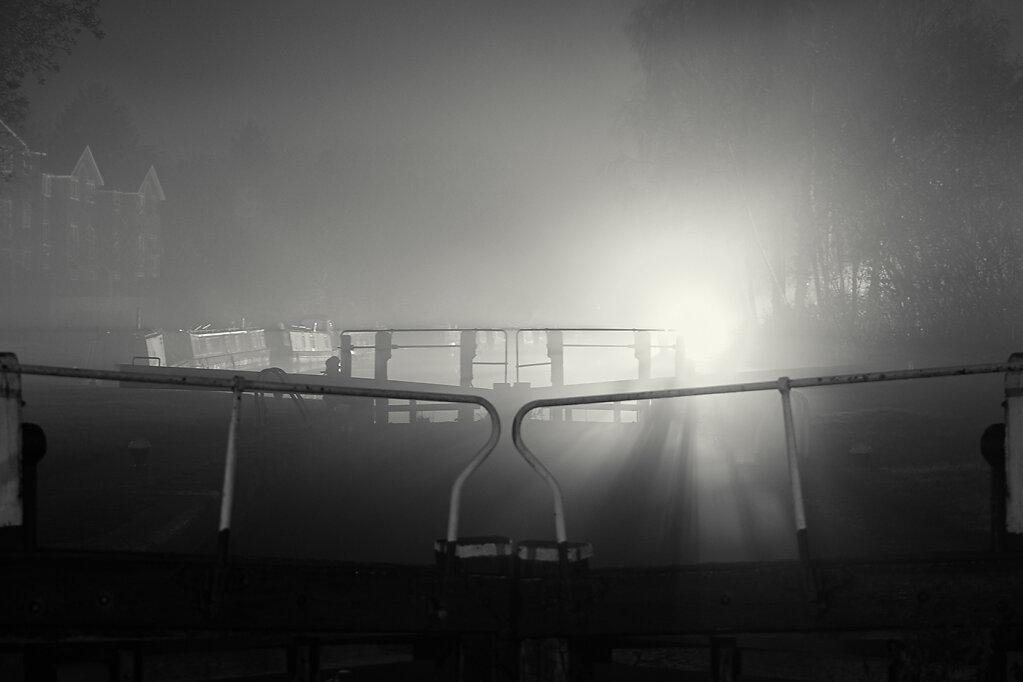 Through-The-Fog2.jpg